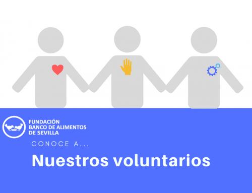 Nuestros voluntarios